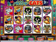 Alley Cats Online Slot