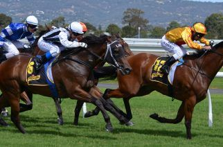 Source: https://pixabay.com/en/horses-racing-jockey-sport-rider-380408/