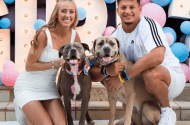 Patrick Mahomes and Brittany Matthews with their dogs