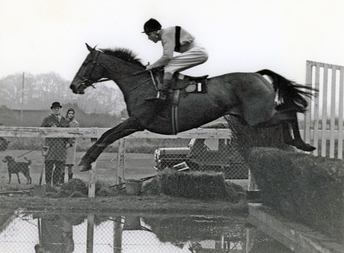 Arkle was a three-time Cheltenham Gold Cup Winner