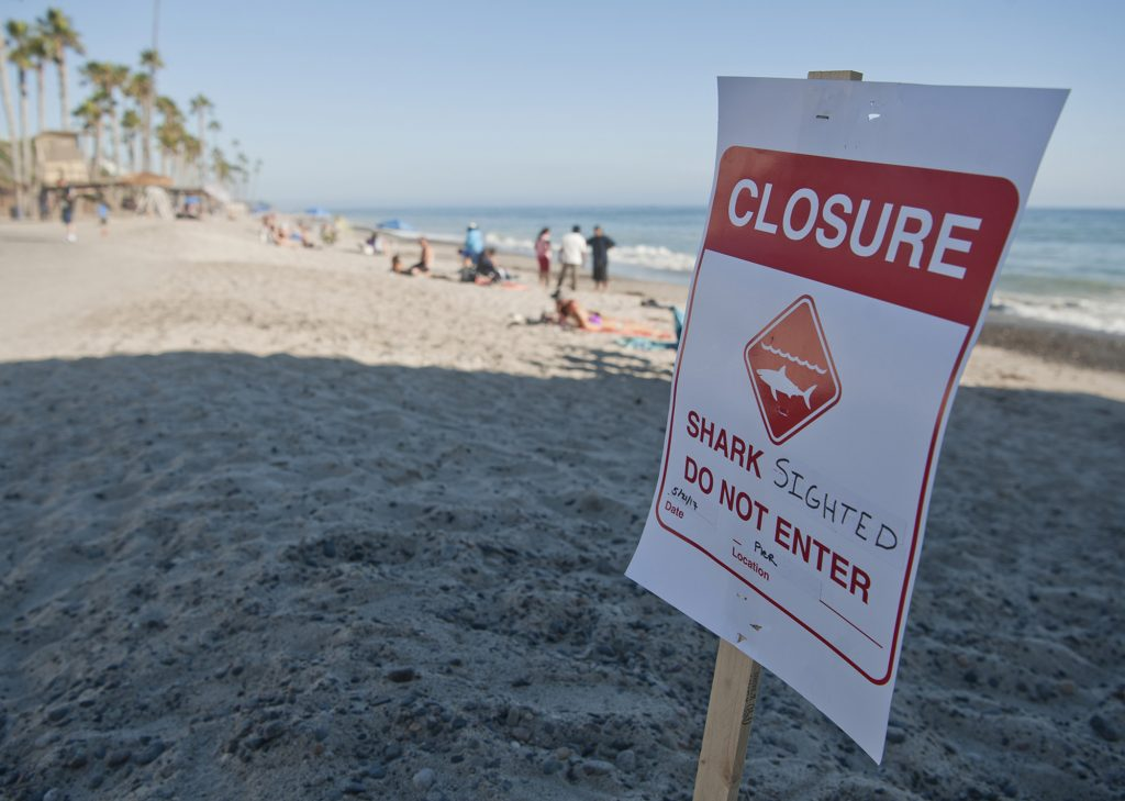 Closure sign warning people about the shark-infested waters