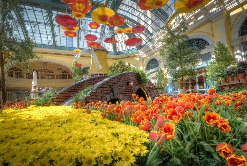 A shot of a blissful flower display inside the Bellagio