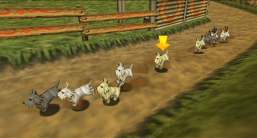 Dog racing that you could bet on in previous Zelda games