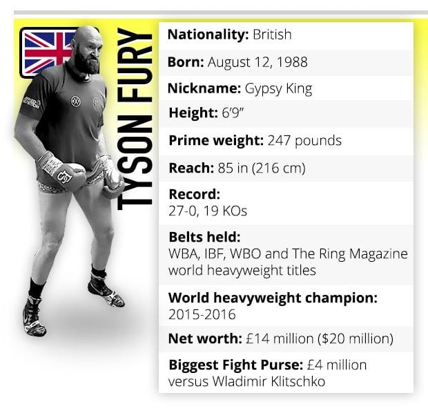 Tyson Fury boxer profile