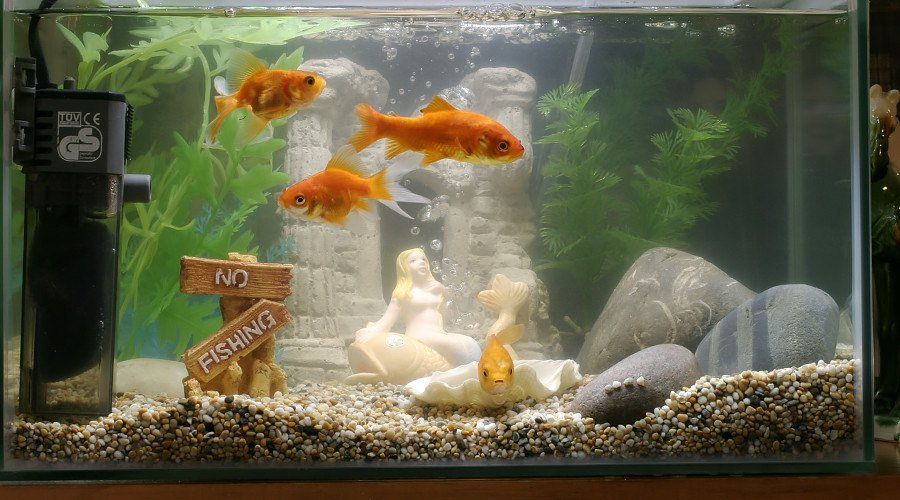 Example of a fish tank in relation to the hacking incident