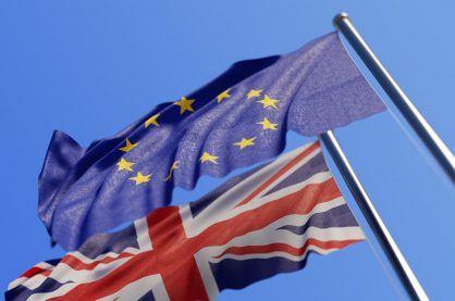EU Brexit flags