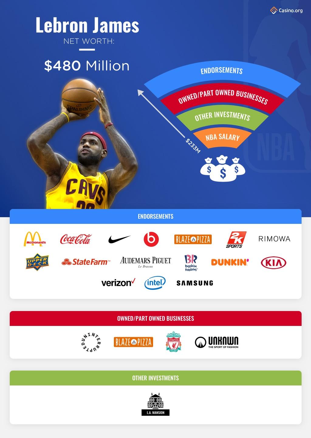 Lebron  James infographic