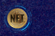 NFT in a coin