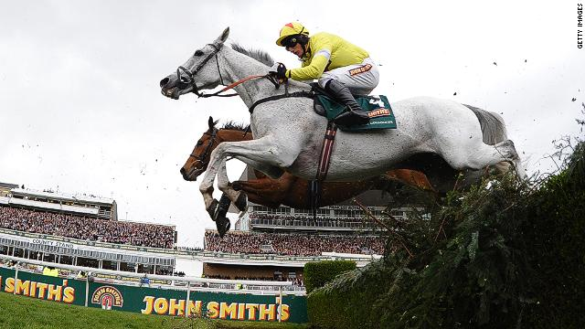 What's the Deal with Grey Horses? Why Only 3 Have Won a Grand National