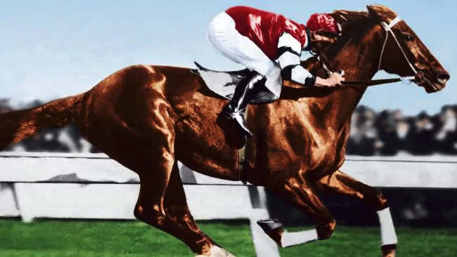 Phar Lap was a hugely popular New Zealand-bred horse