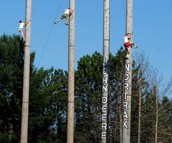 people climbing giant trees in lumberjack championship