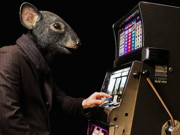 A rat playing slot machines at a casino
