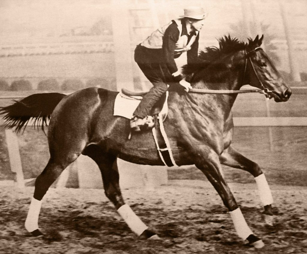 Seabiscuit was an inspiring small American thoroughbred