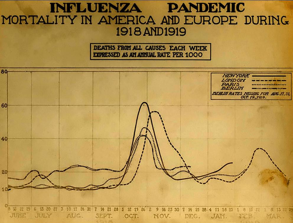 Spanish flu death chart