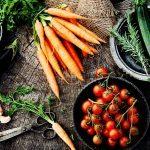 Vegan Vegas: The 5 Best Vegan Restaurants In Sin City