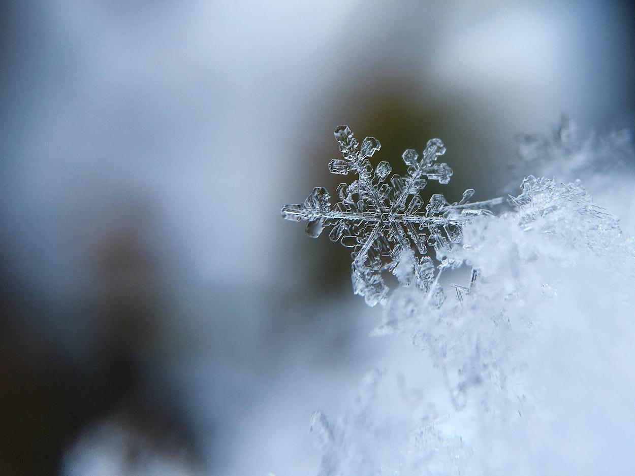 snow flake close up