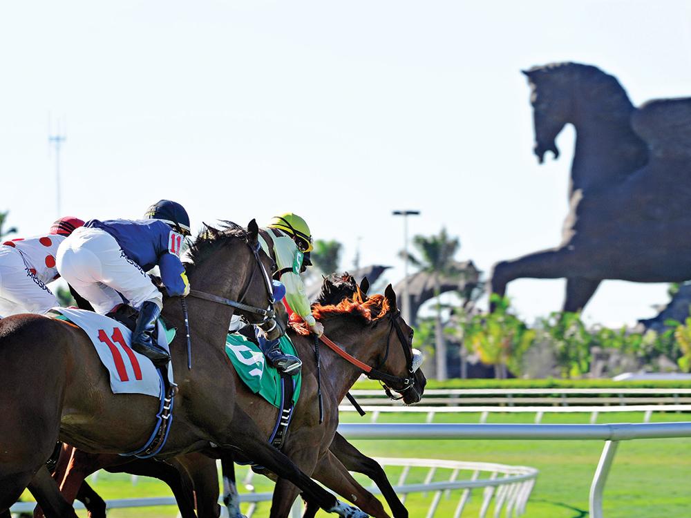 Horses running on racecourse.