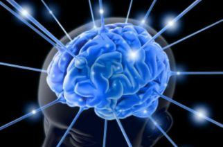 How Your Gambling Brain Directs You to Bet, Keep Betting or Cash Out