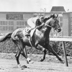 Top 10 Racehorses of All-Time