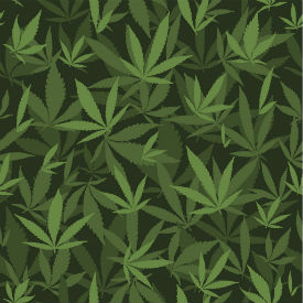 weed leaf background