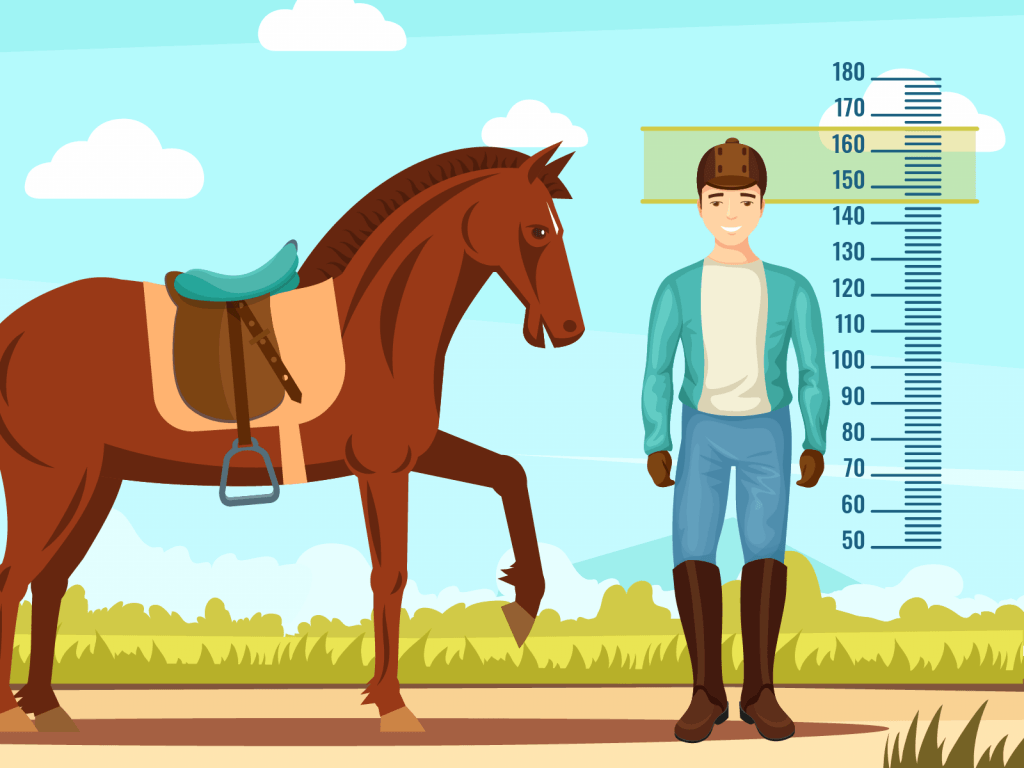 Jockey by height measuring tool