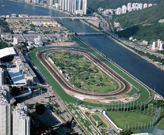 The Sha Tin Racecourse (Image Credit:tripadvisor.com)