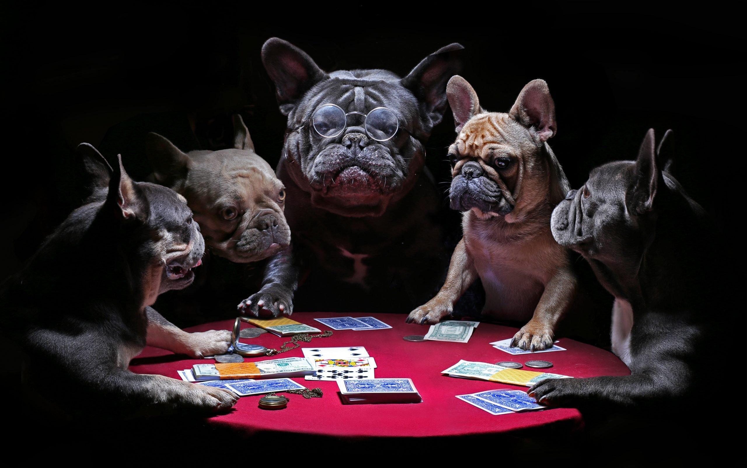 R. Paul Wilson On: A Beautiful Move in Poker