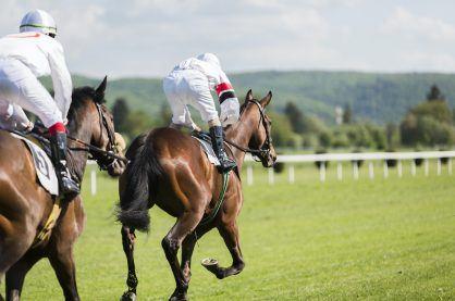 horse jockeys racing