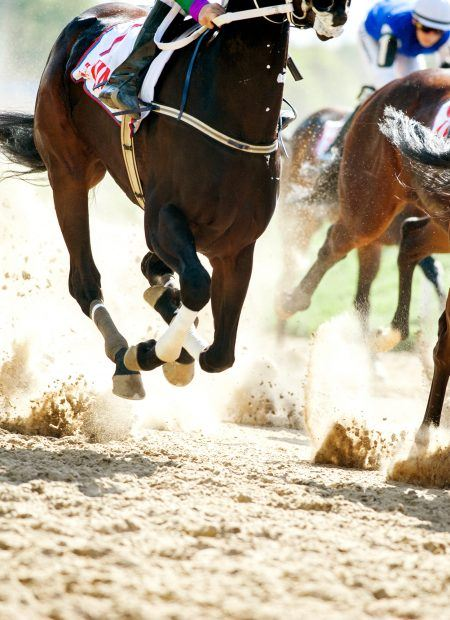 Horses running on a sand track