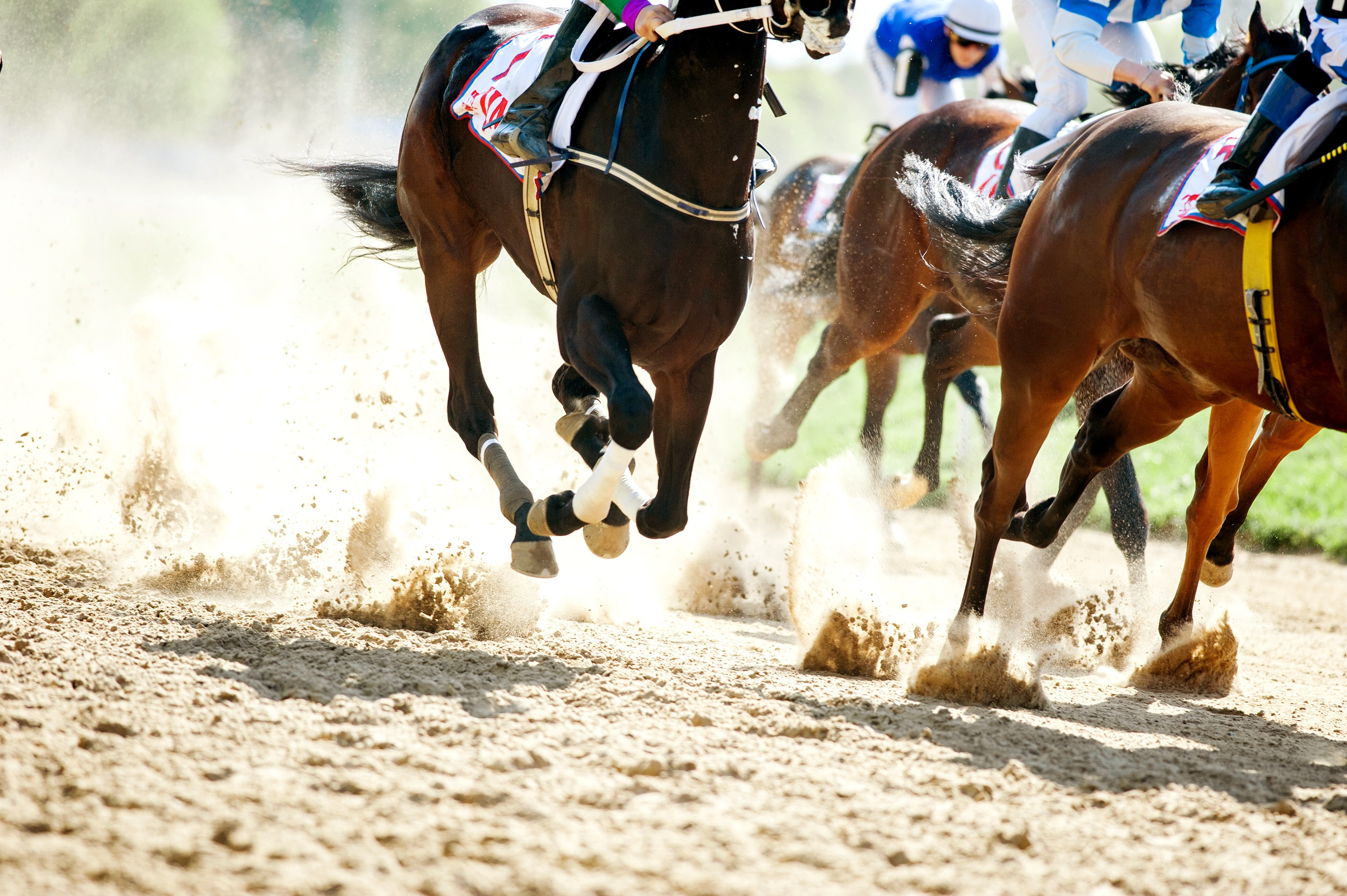 Top 10 Horse Racing Tracks In The World