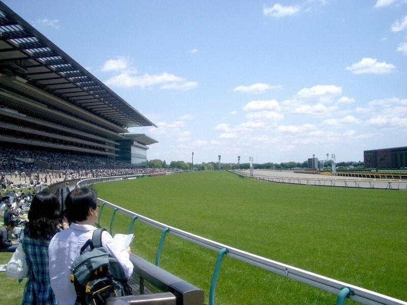 Everything about Tokyo Racecourse is big.