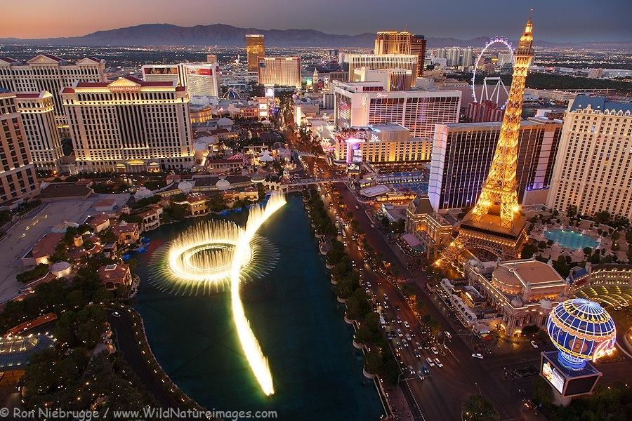The Skyline Of Las Vegas. (Image credit:wildnatureimages.com)