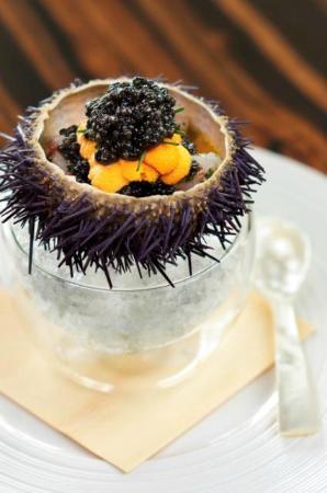 sea urchin at Waku Ghin