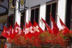 Schweizer Flaggen, Geranien