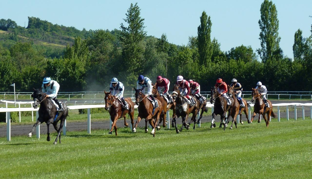 Pferderennen auf der Pferderennbahn