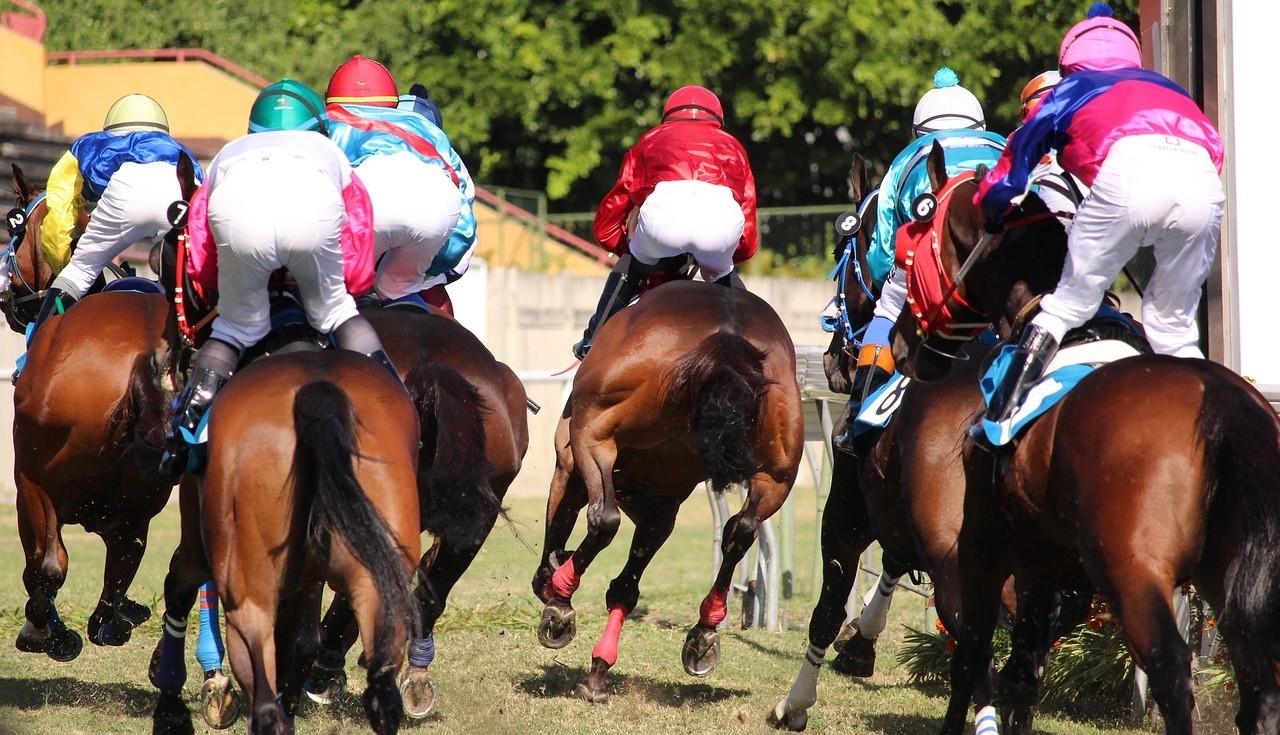 Pferderennsport