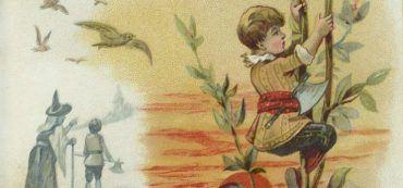 Junge, Zeichnung, Bohnenranke, Wanderer