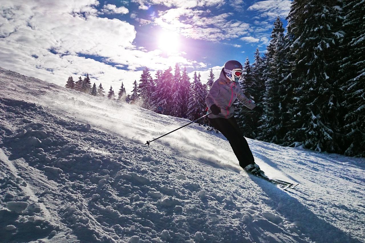 Schnee, Skifahrer, Sonne, Bäume