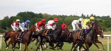 Pferde, Reiter, Pferderennen