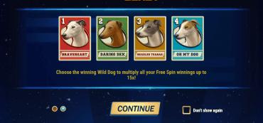 vier Hunde