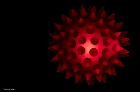 Virus, Virus Modell