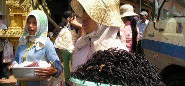 zwei Frauen, frittierte Vogelspinnen