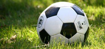 Fußball, Rasen