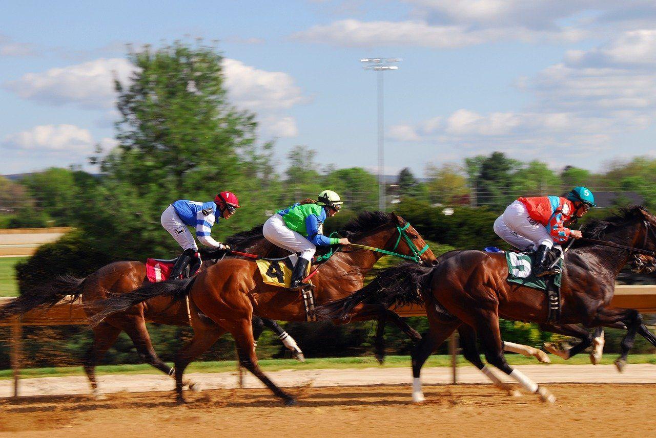 Pferderennen, Rennsport, Pferderennbahn, Jockey