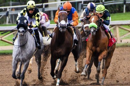 Pferderennen, Pferderennbahn, Jockeys
