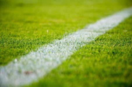 Fussballrasen Nahaufnahme