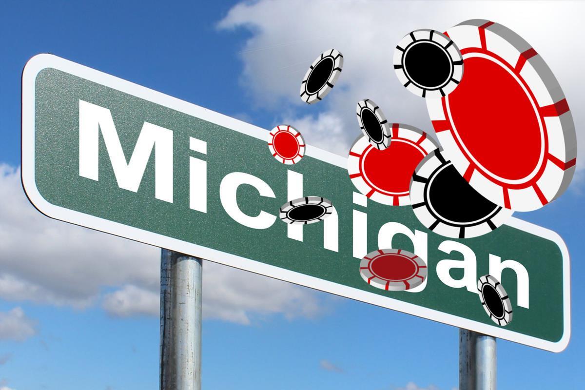 Michigan Schild, Chips