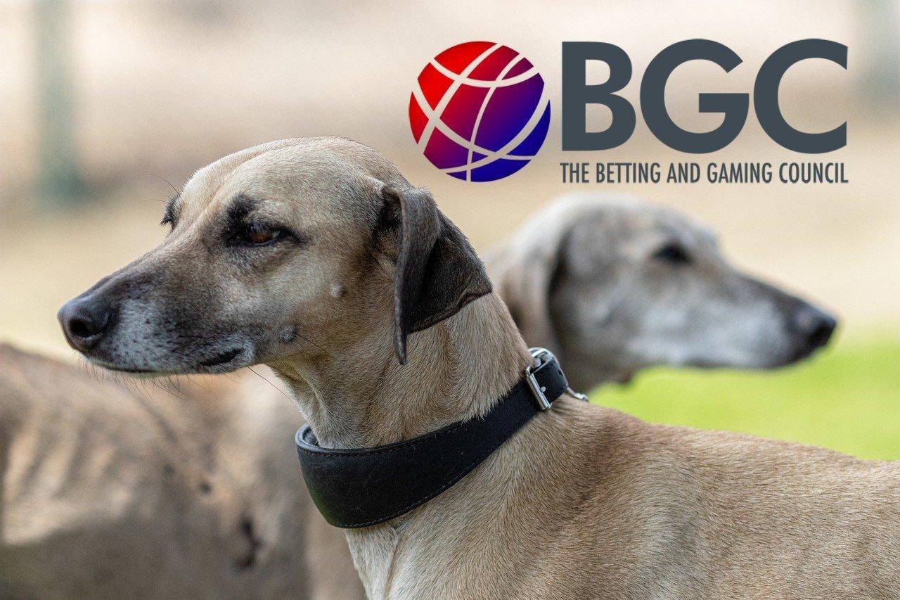 Windhunde, Logo BGC