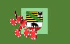 Sachsen-Anhalt Wappen, Chips
