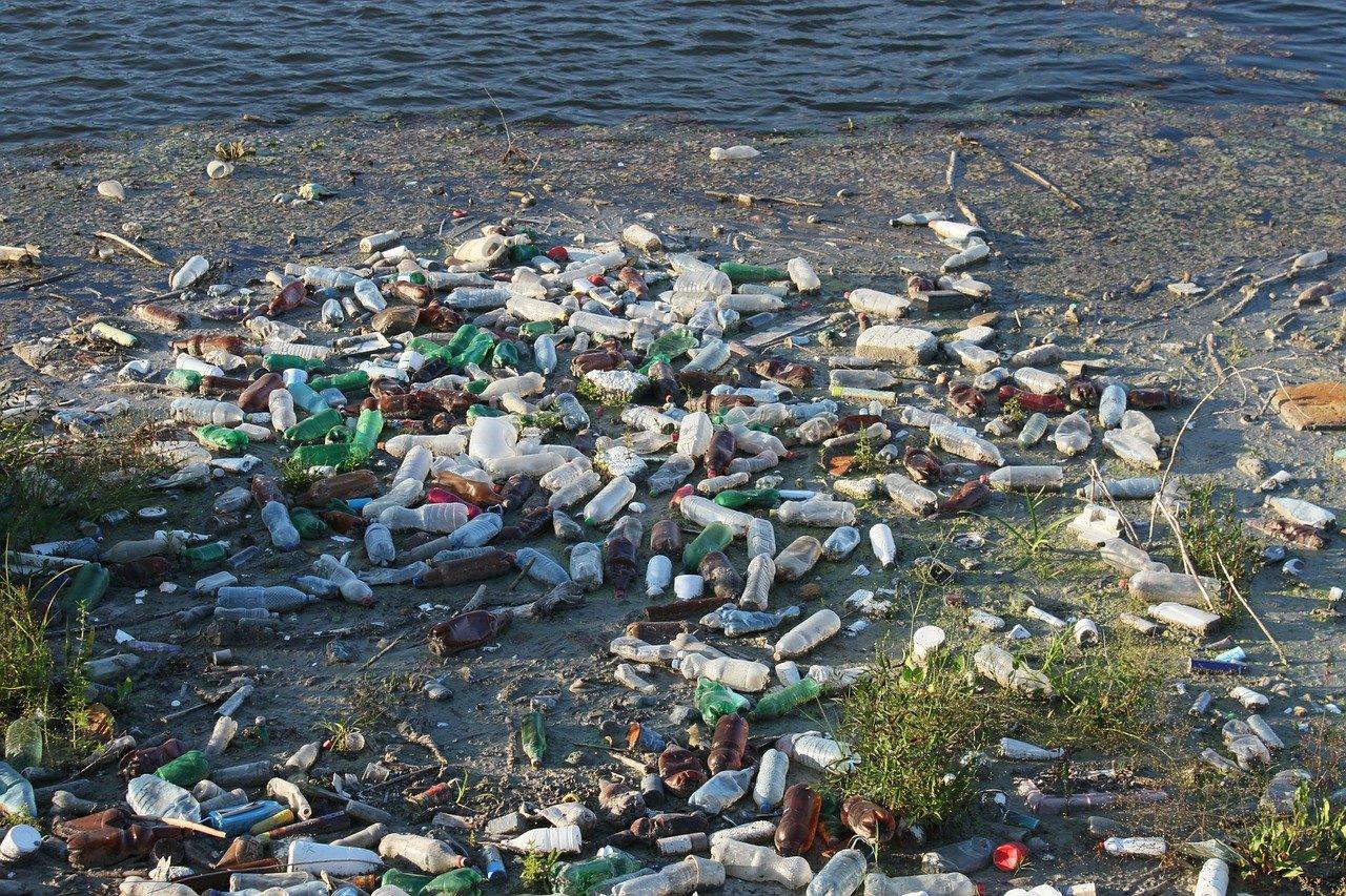 Plastikflaschen am Ufer